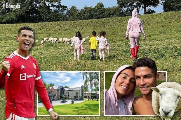 """Ronaldo dọn khỏi """"Biệt thự xa hoa"""" vì... cừu"""